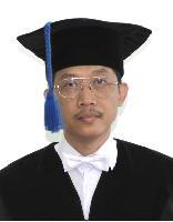 Prof Sulis